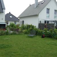 Moderner Familiengarten mit Wasserrinne - vorher