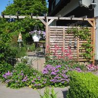 Terrassengestaltung in Wehdem